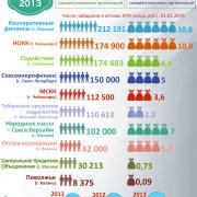 Инфографика. СРО: активы и пайщики 2013